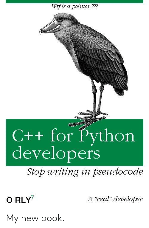 """Developers: Wtf is a pointcr???  C++ for Python  developers  Stop writing in pseudocode  A """"real"""" developer  O RLY My new book."""