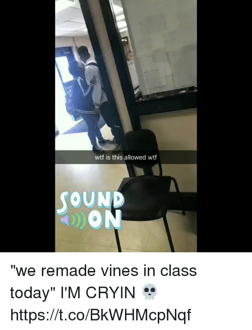 """Wtf, Today, and Vines: wtf is this allowed wtf  OUND """"we remade vines in class today"""" I'M CRYIN 💀 https://t.co/BkWHMcpNqf"""