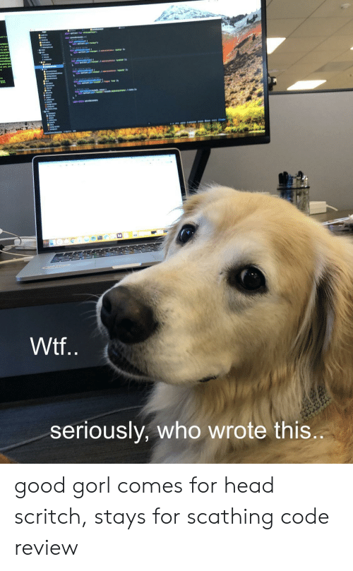 Head, Wtf, and Good: Wtf..  seriously, who wrote this... good gorl comes for head scritch, stays for scathing code review