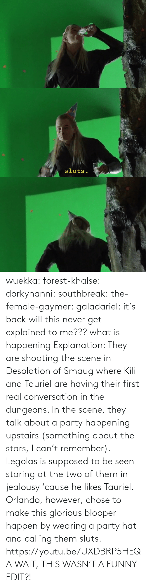 name: wuekka: forest-khalse:   dorkynanni:  southbreak:   the-female-gaymer:   galadariel:  it's back   will this never get explained to me???    what is happening    Explanation:  They are shooting the scene in Desolation of Smaug where Kili and Tauriel are having their first real conversation in the dungeons.  In the scene, they talk about a party happening upstairs (something about the stars, I can't remember). Legolas is supposed to be seen staring at the two of them in jealousy 'cause he likes Tauriel.  Orlando, however, chose to make this glorious blooper happen by wearing a party hat and calling them sluts.    https://youtu.be/UXDBRP5HEQA    WAIT, THIS WASN'T A FUNNY EDIT?!