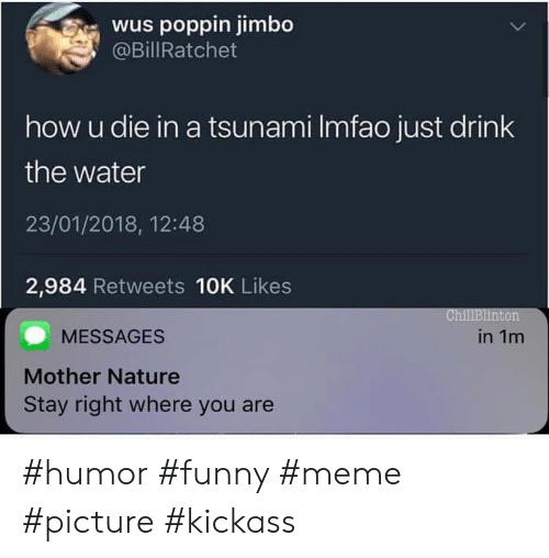 Funny, Meme, and Nature: wus poppin jimbo  @BillRatchet  how u die in a tsunami Imfao just drink  the water  23/01/2018, 12:48  2,984 Retweets 10K Likes  ChillBlinton  MESSAGES  in 1m  Mother Nature  Stay right where you are #humor #funny #meme #picture #kickass