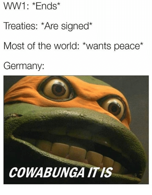 Memes, Germany, and World: WW1: *Ends*  Treaties: *Are signed*  Most of the world: *wants peace*  Germany:  COWABUNGA ITIS