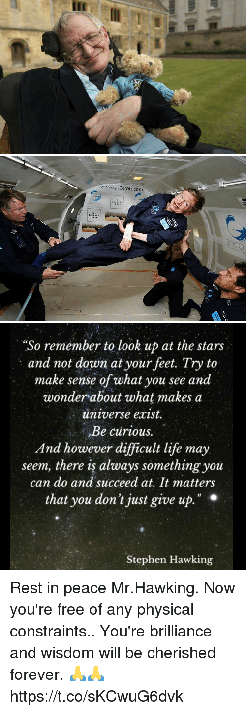 """Life, Memes, and Stephen: www.goZeroG.com  zero  zero   """"So remember to look up at the stars  and not down at your feet. Try to  make sense of what you see and  wonder about what makes a  universe exist.  Be curious.  And however difficult life may  seem, there is always something you  can do and succeed at, It matters  that you don't just give up  Il  Stephen Hawking Rest in peace Mr.Hawking. Now you're free of any physical constraints.. You're brilliance and wisdom will be cherished forever. 🙏🙏 https://t.co/sKCwuG6dvk"""