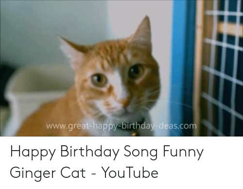 Wwwgreat-Happy-Birthday-Deascom Happy Birthday Song Funny