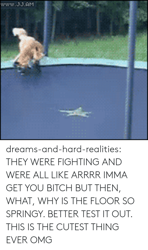 Bitch, Omg, and Tumblr: www.J.AM dreams-and-hard-realities:   THEY WERE FIGHTING AND WERE ALL LIKE ARRRR IMMA GET YOU BITCH BUT THEN, WHAT, WHY IS THE FLOOR SO SPRINGY. BETTER TEST IT OUT.  THIS IS THE CUTEST THING EVER OMG