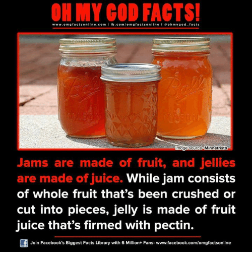 Facebook, Facts, and Juice: www.omg facts online.com I fb.com  m g facts on  Minnetrista  umage Source  Jams are made of fruit, and jellies  are made of juice.  While jam consists  of whole fruit that's been crushed or  cut into pieces, jelly is made of fruit  juice that's firmed with pectin.  Join Facebook's Biggest Facts Library with 6 Million+ Fans- www.facebook.com/omgfactsonline