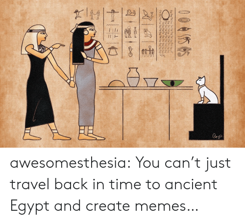 Memes, Tumblr, and Blog: wwww.  Cro  004你帖  十一张一亡 awesomesthesia:  You can't just travel back in time to ancient Egypt and create memes…