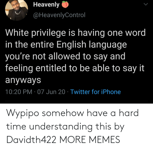 hard: Wypipo somehow have a hard time understanding this by Davidth422 MORE MEMES