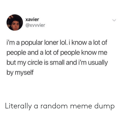 Lol, Meme, and Random: xavier  i'm a popular loner lol. i know a lot of  people and a lot of people know me  but my circle is small and i'm usually  by myself Literally a random meme dump