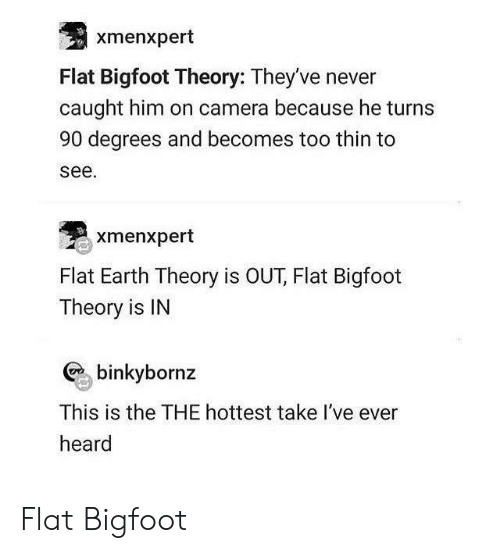 Bigfoot, Camera, and Earth: xmenxpert  Flat Bigfoot Theory: They've never  caught him on camera because he turns  90 degrees and becomes too thin to  see.  xmenxpert  Flat Earth Theory is OUT, Flat Bigfoot  Theory is IN  binkybornz  This is the THE hottest take l've ever  heard Flat Bigfoot