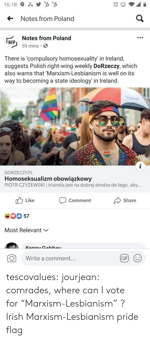 "polish: Y  16:18  a  Notes from Poland  Notes from Poland  NFP  59 mins  There is 'compulsory homosexuality' in Ireland,  suggests Polish right-wing weekly DoRzeczy, which  also warns that 'Marxism-Lesbianism is well on its  way to becoming a state ideology' in Ireland.  i  DORZECZY.PL  Homoseksualizm obowiązkowy  PIOTR CZYŻEWSKI | Irlandia jest na dobrej drodze do tego, aby...  Like  Comment  Share  57  Most Relevant  Kannu Gahhay  GIF  Write a comment... tescovalues: jourjean: comrades, where can I vote for ""Marxism-Lesbianism"" ?  Irish Marxism-Lesbianism pride flag"