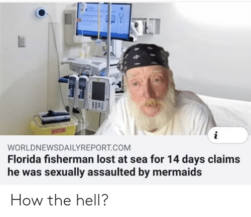 Mermaids: Y  WORLDNEWSDAILYREPORT.COM  Florida fisherman lost at sea for 14 days claims  he was sexually assaulted by mermaids How the hell?