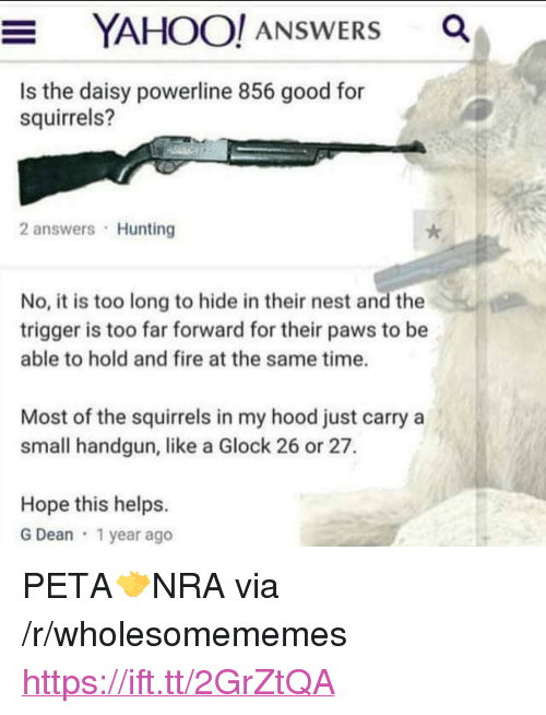 """Fire, Peta, and Hunting: YAHOO! ANSWERS a  Is the daisy powerline 856 good for  squirrels?  2 answers Hunting  No, it is too long to hide in their nest and the  trigger is too far forward for their paws to be  able to hold and fire at the same time.  Most of the squirrels in my hood just carry a  small handgun, like a Glock 26 or 27.  Hope this helps.  G Dean 1 year ago <p>PETA🤝NRA via /r/wholesomememes <a href=""""https://ift.tt/2GrZtQA"""">https://ift.tt/2GrZtQA</a></p>"""