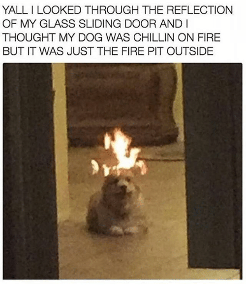glassing: YALL I LOOKED THROUGH THE REFLECTION  OF MY GLASS SLIDING DOOR AND I  THOUGHT MY DOG WAS CHILLIN ON FIRE  BUT IT WAS JUST THE FIRE PIT OUTSIDE