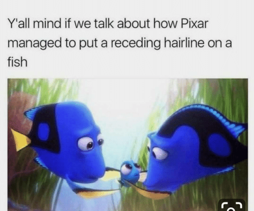 Hairline: Y'all mind if we talk about how Pixar  managed to put a receding hairline on a  fish  IS