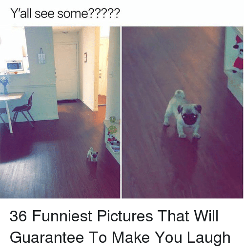 Pictures, Will, and Make: Y'all see some????? 36 Funniest Pictures That Will Guarantee To Make You Laugh