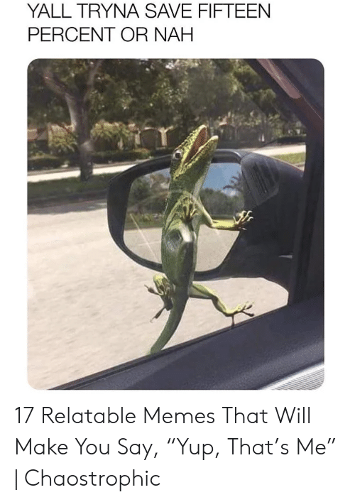 "Memes, Relatable, and Will: YALL TRYNA SAVE FIFTEEN  PERCENT OR NAH 17 Relatable Memes That Will Make You Say, ""Yup, That's Me"" 