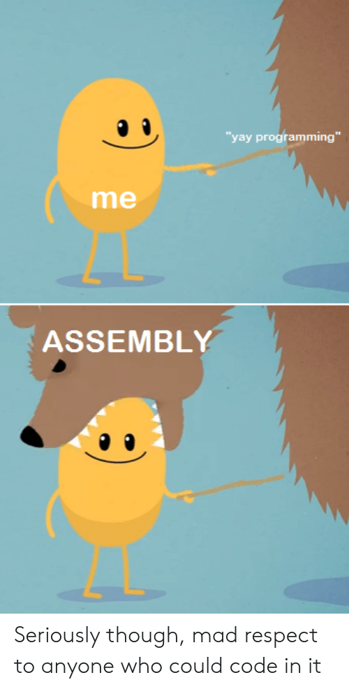 """Respect, Mad, and Programming: yay programming""""  me  ASSEMBLY Seriously though, mad respect to anyone who could code in it"""