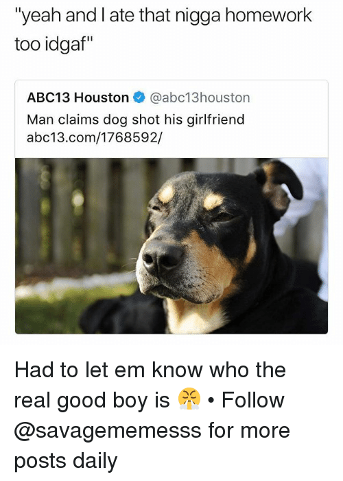 "Memes, Yeah, and Abc13: ""yeah and I ate that nigga homework  too idgaf""  ABC13 Houston @abc13houston  Man claims dog shot his girlfriend  abc13.com/1768592/ Had to let em know who the real good boy is 😤 • Follow @savagememesss for more posts daily"