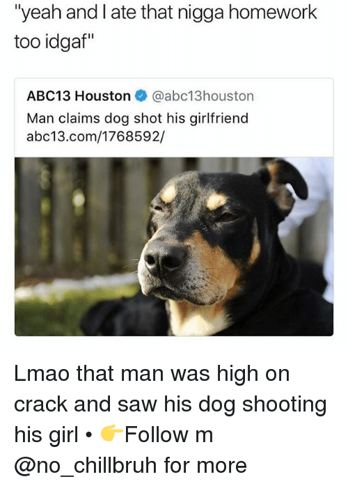 "Funny, Lmao, and Saw: ""yeah and I ate that nigga homework  too idgaf""  ABC13 Houston @abc13houston  Man claims dog shot his girlfriend  abc13.com/1768592/ Lmao that man was high on crack and saw his dog shooting his girl • 👉Follow m @no_chillbruh for more"