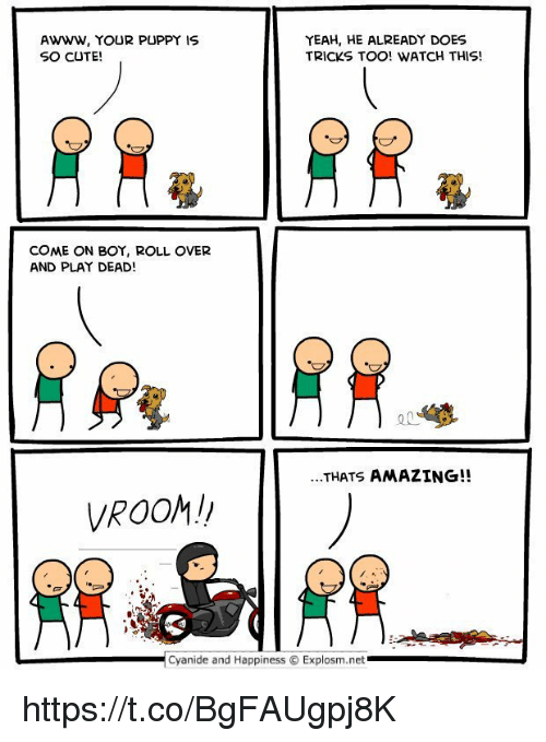 Cute, Yeah, and Cyanide and Happiness: YEAH, HE ALREADY DOES  AWWW, YOUR PUPPY IS  SO CUTE  TRICKS TOO! WATCH THIS!  COME ON BOY, ROLL OVER  AND PLAY DEAD!  ...THATS AMAZING!!  VROOM!  Cyanide and Happiness Explosm.net https://t.co/BgFAUgpj8K