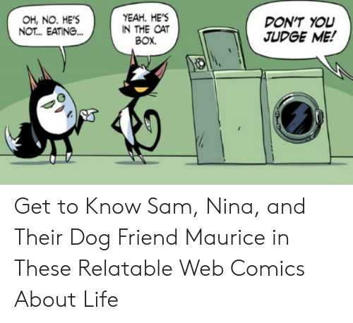 Life, Yeah, and Relatable: YEAH. HE'S  IN THE CAT  BOX.  OH, NO. HE'S  NOT... EATING...  DON'T YOU  JUDGE ME! Get to Know Sam, Nina, and Their Dog Friend Maurice in These Relatable Web Comics About Life
