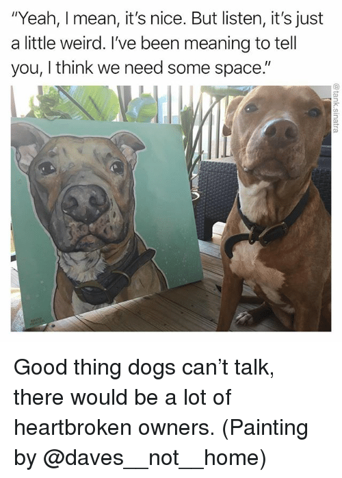 """Dogs, Funny, and Weird: """"Yeah, I mean, it's nice. But listen, it's just  a little weird. I've been meaning to tell  you, I think we need some space."""" Good thing dogs can't talk, there would be a lot of heartbroken owners. (Painting by @daves__not__home)"""
