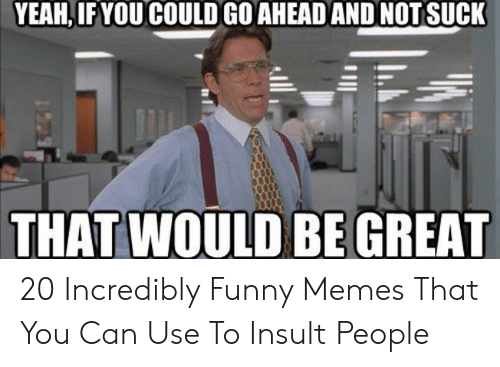 Funny, Memes, and Yeah: YEAH, IFYOU COULD GO AHEAD AND NOTSUCK  THAT WOULD BE GREAT 20 Incredibly Funny Memes That You Can Use To Insult People