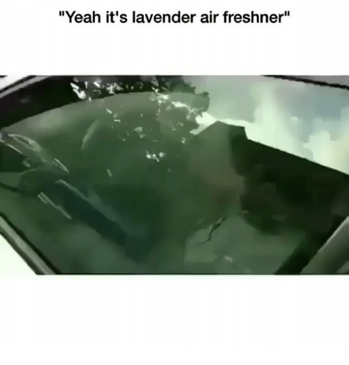 "Memes, Yeah, and 🤖: ""Yeah it's lavender air freshner"""