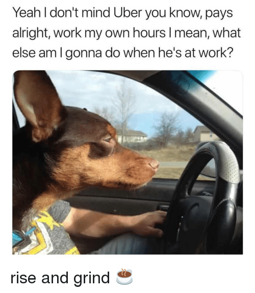 Memes, Uber, and Yeah: Yeah l don't mind Uber you know, pays  alright, work my own hours I mean, what  else am lgonna do when he's at work? rise and grind ☕