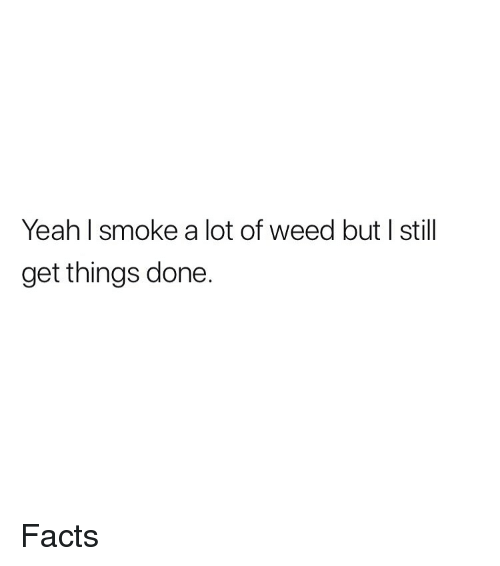 Facts, Weed, and Yeah: Yeah l smoke a lot of weed but I still  get things done. Facts