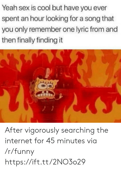 Funny, Internet, and Sex: Yeah sex is cool but have you ever  spent an hour looking for a song that  you only remember one lyric from and  then finally finding it After vigorously searching the internet for 45 minutes via /r/funny https://ift.tt/2NO3o29