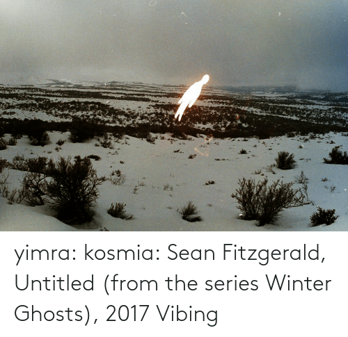 ghosts: yimra: kosmia:  Sean Fitzgerald, Untitled (from the series Winter Ghosts), 2017   Vibing