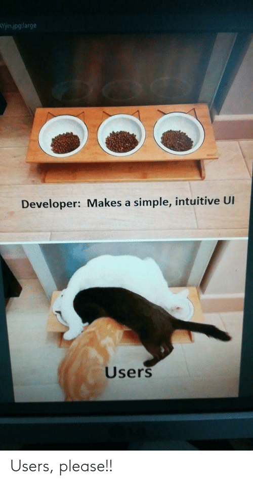 Users: Yjinjpg:large  Developer: Makes a simple, intuitive UI  Users Users, please!!