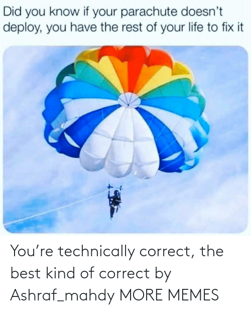 Correct: You're technically correct, the best kind of correct by Ashraf_mahdy MORE MEMES