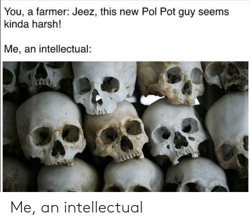 Pol Pot: You, a farmer: Jeez, this new Pol Pot guy seems  kinda harsh!  Me, an intellectual: Me, an intellectual