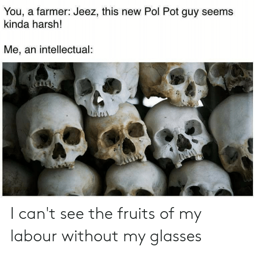 Pol Pot: You, a farmer: Jeez, this new Pol Pot guy seems  kinda harsh!  Me, an intellectual: I can't see the fruits of my labour without my glasses