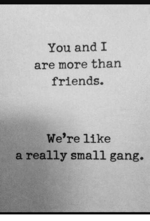 Friends, Gang, and You: You and 1I  are more than  friends.  We're like  a really small gang.