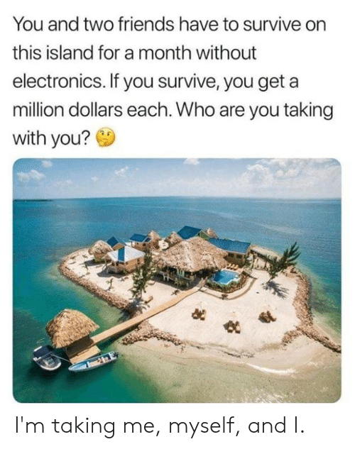 Dank, Friends, and 🤖: You and two friends have to survive on  this island for a month without  electronics. If you survive, you get  million dollars each. Who are you taking  with you? I'm taking me, myself, and I.