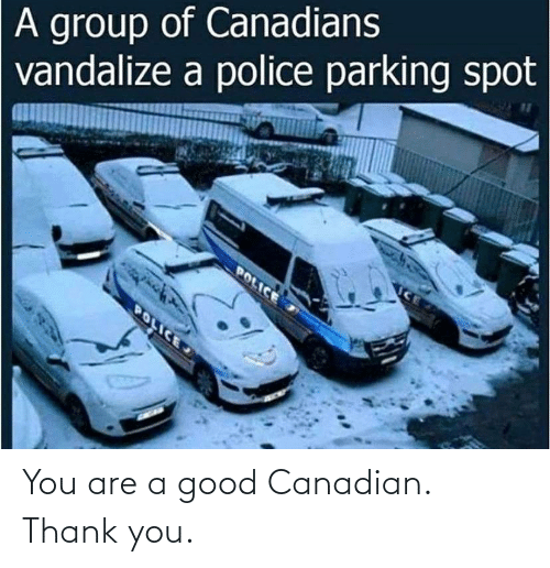 You Are: You are a good Canadian. Thank you.