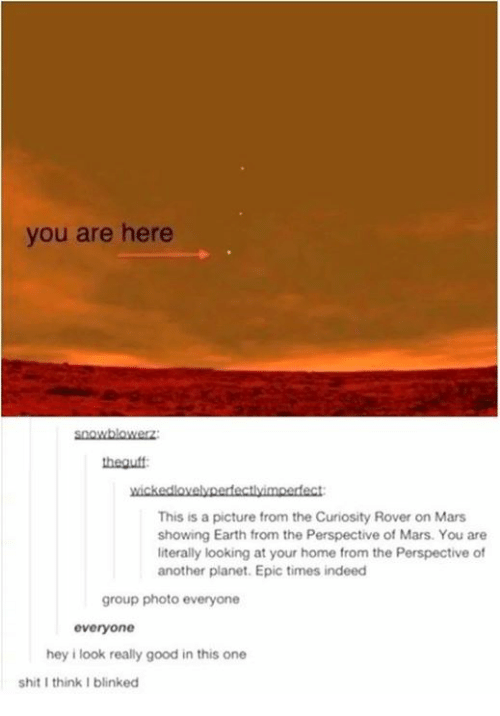 Shit, Earth, and Good: you are here  heauff  elynerdfectlvimoertect  This is a picture from the Curiosity Rover on Mars  showing Earth from the Perspective of Mars. You are  literally looking at your home from the Perspective of  another planet. Epic times indeed  group photo everyone  everyone  hey i look really good in this one  shit I think I blinked