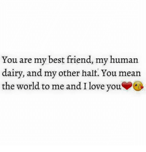 Best Friend, Friends, and Love: You are my best friend, my human  dairy, and my other halt. You mean  the world to me and I love you