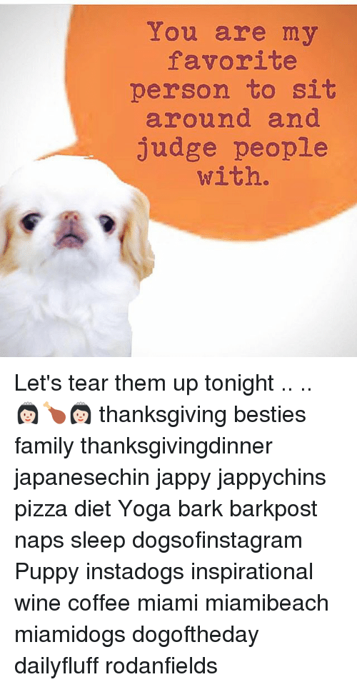 Family, Memes, and Pizza: You are my  favorite  person to sit  around and  Judge people  with. Let's tear them up tonight .. .. 👸🏻🍗👸🏻 thanksgiving besties family thanksgivingdinner japanesechin jappy jappychins pizza diet Yoga bark barkpost naps sleep dogsofinstagram Puppy instadogs inspirational wine coffee miami miamibeach miamidogs dogoftheday dailyfluff rodanfields