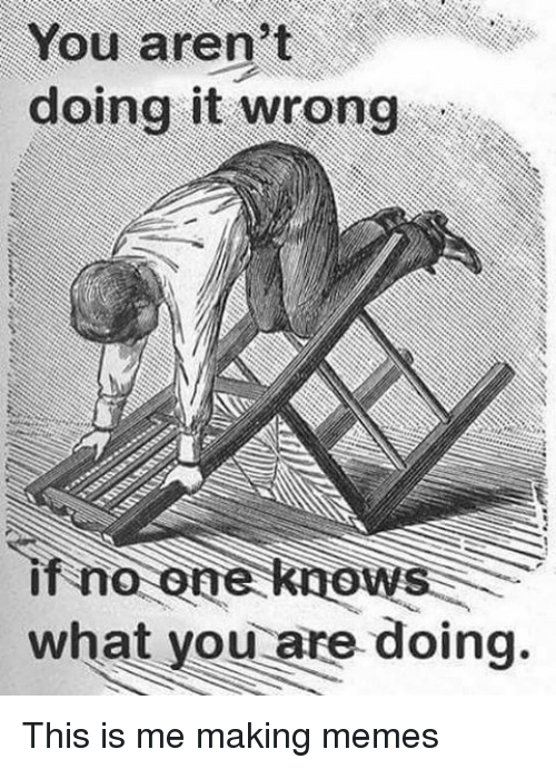 Making Meme: You aren't  doing it wrong  if no one knows  what you are doing. This is me making memes