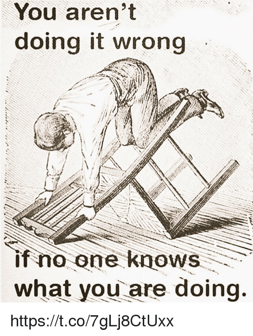Memes, 🤖, and One: You aren't  doing it wrong  if no one knows  what you are doing. https://t.co/7gLj8CtUxx