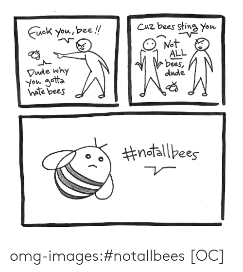Why You Gotta: you,bee!!Cuz bees sting you  Vude why  You gotta  hate bees  ALL  bees  dude  omg-images:#notallbees [OC]