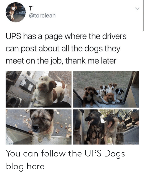 UPS: You can follow the UPS Dogs blog here