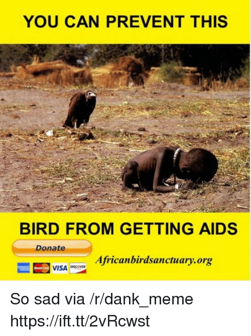 Dank, Meme, and Sad: YOU CAN PREVENT THIS  BIRD FROM GETTING AIDS  Donate  Africanbirdsanctuary.org  VISA ovER So sad via /r/dank_meme https://ift.tt/2vRcwst