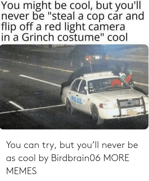 Never: You can try, but you'll never be as cool by Birdbrain06 MORE MEMES