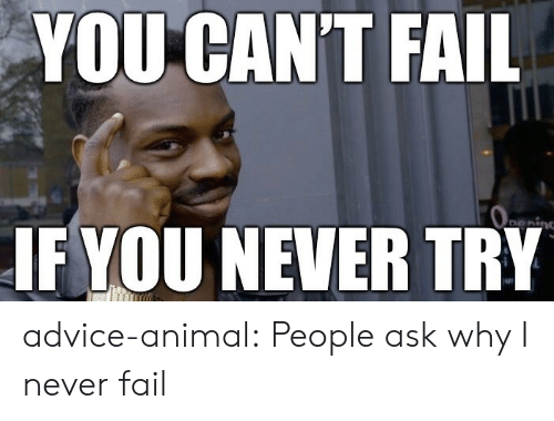 Advice, Fail, and Tumblr: YOU CAN'T FAIL  Oeing  IF YOU NEVER TRY advice-animal:  People ask why I never fail